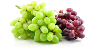 winegear1